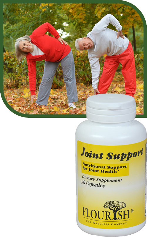 JOINTSUPPORT